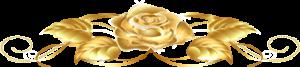 rose_hr-image